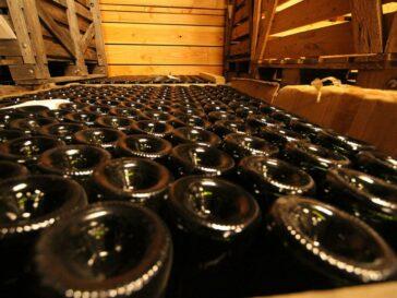 bouteilles_vides_2-1-1024x682